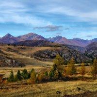 Краски горного Алтая :: Александр Потапов