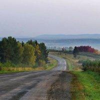 По дороге в деревню, на дачу. :: Пётр Сесекин