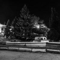 Ночной парк :: Виктор Зенин