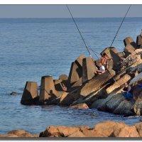 Рыбаки. :: Leonid Korenfeld