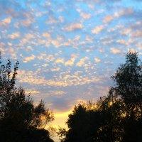 облака на закате :: Ольга (Кошкотень) Медведева