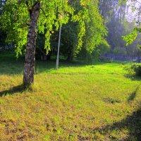 На солнечной поляне тишина и покой . :: Мила Бовкун