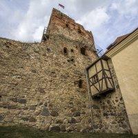 Дозорная башня :: Gennadiy Karasev
