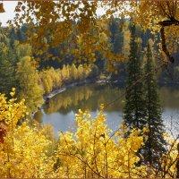 Слишком яркая осень :: Наталия Григорьева