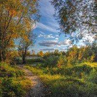 Осенний вечер у реки. :: Vadim Piottukh