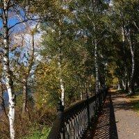 Осень :: kolyeretka