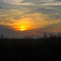 Закат над полем :: Сергей Руденко