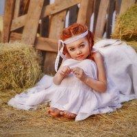 Золотого лета конопушки.. :: Юлия Романенко