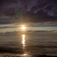 Скупые краски Белого моря :: Александр Силинский