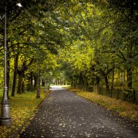 Теплая осень... :: Рома Григорьев