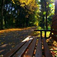 Осень :: Андрей Михайлин