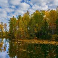 Цвета сентября :: vladimir