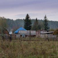 Моя деревенька. :: Наталья ***