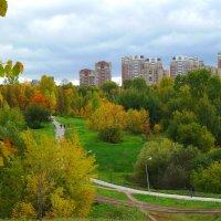 Осень наступила. :: Александр Атаулин