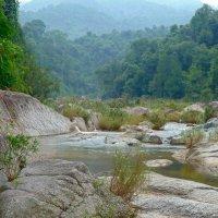 В горах Вьетнама. :: Чария Зоя