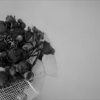 Дарите друг другу нежность :: Nastasia Nikitina