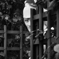 В Летнем саду :: Irina Satyr