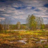 Весна идет :: Дмитрий Motorin