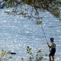 отставник на рыбалке :: Александр Прокудин