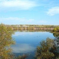 Осень в Затоне на реке Урал :: Александр Облещенко