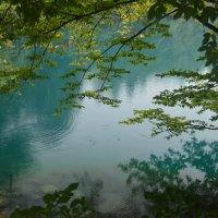 Зеленое озеро :: Андрей Кончин