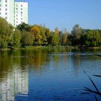 Московский пруд. :: Андрей