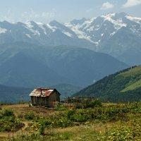 в горах Кавказа :: Vladimir T