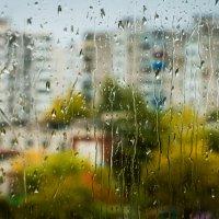 В субботу утром из окна... :: Сергей Щелкунов
