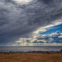 Финский залив :: Николай Николенко