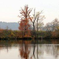 На отражение в воде смотреть готова я  часами.. :: Наталья Соколова