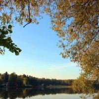 осень в красках :: Ольга (Кошкотень) Медведева