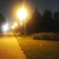 Вечер в парке :: Светлана Бажанова
