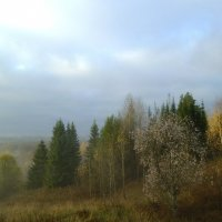 Туманная расплывчатость пейзажа осенним утром :: Николай Туркин
