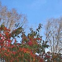 Улетели листья с тополей :: Валерий Талашов