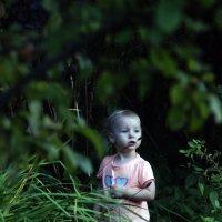 В джунглях :: OlgaLi Ли