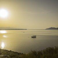 Скадарское озеро :: Артем