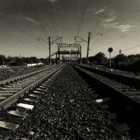 Белый или черный путь? :: Виталий Павлов