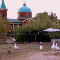 на церковном подворье :: Александр Прокудин