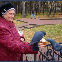 Мама кормит голубей. :: Татьяна ПТГ