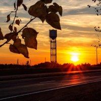 Не перестану удивляться  Богатству красок на закате... :: Анатолий Клепешнёв