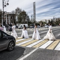 Невесты :: Сергей Елесин