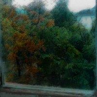окно :: Юлия Денискина