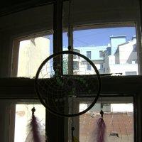 Питерские окна :: Марина Домосилецкая