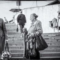 2015 год, рынок :: MVMarina