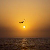 Морской закат :: Виктор Дилянян
