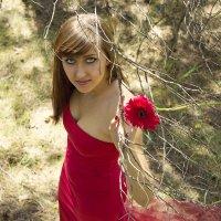 Девушка в красном :: Анастасия Шумихина