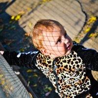 Малышка :: Анастасия Жигалёва
