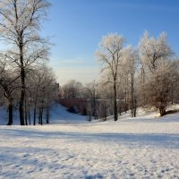 Зима в Царицыно. :: Oleg4618 Шутченко