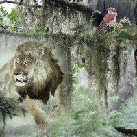 «Чтоб землю сохранить прекрасной ...» :: vitalsi Зайцев