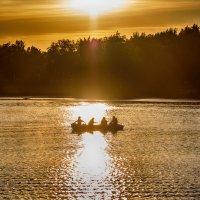 На дорожке уходящего солнца :: Николай Николенко